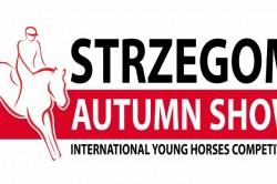 logo autumn 800x391